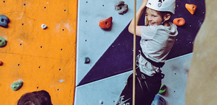 Malý hoch zavěšený na horolezecké stěně